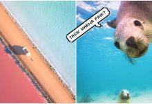 Tasik Warna Pink? Haa..Ini Antara Benda Underrated Yang Korang Kena Rasai Bila Sampai Australia!