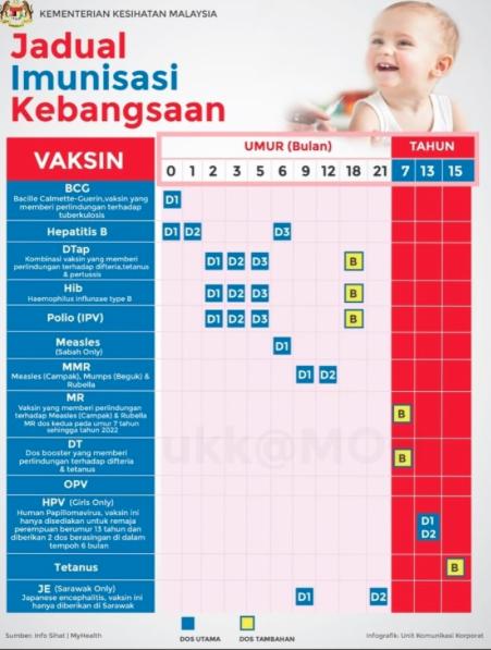 Fungsi Vaksin Untuk 11 Jenis Penyakit